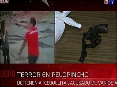 Detuvieron a supuesto ladrón que causaba terror en la Chacarita
