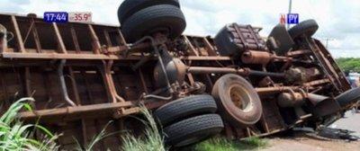 Mueren caballos de la Policía Nacional en accidente vial
