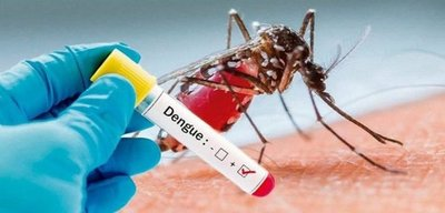 Confirman segunda muerte por dengue