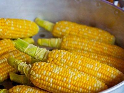 Exportación de maíz a Arabia Saudita creció 122% en 2019