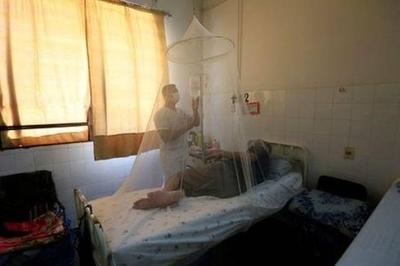 HOY / El dengue no se acaba con la fiebre: fase crítica inicia al tercer o quinto día de primeros síntomas