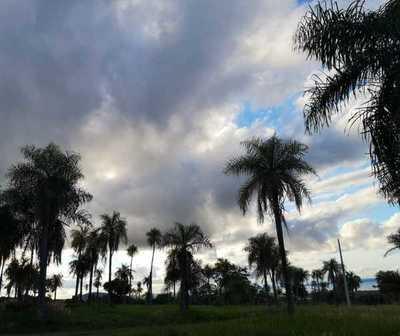 Precipitaciones con ocasionales tormentas eléctricas