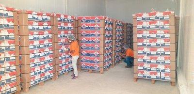 Paraguay logró concretar su primer envío de banana a Chile