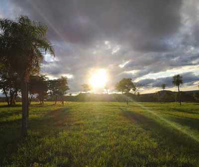 Día cálido con precipitaciones, leves y dispersas