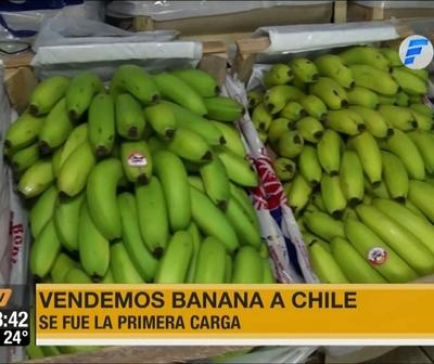 Paraguay exporta por primera vez banana a Chile