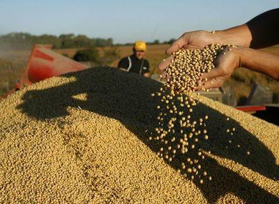 Argentina fue el destino del 69% de envíos de soja