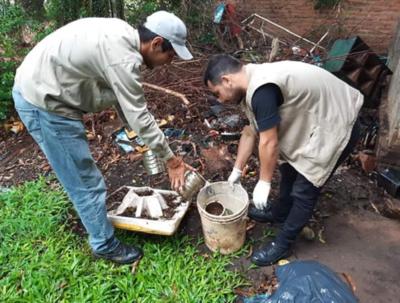De 100 casas intervenidas en Asunción 95 tenían criaderos
