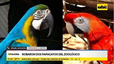Robaron dos papagayos del Botánico