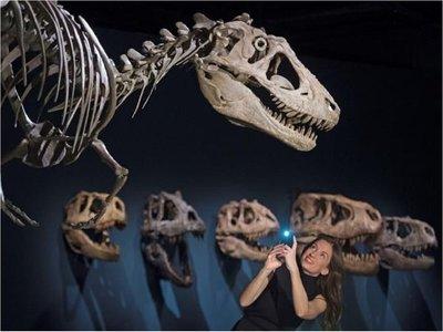 Scotty llega a Escocia para acercar el pasado de los dinosaurios