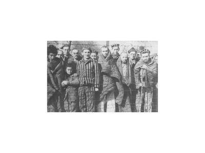 Herida de Auschwitz continúa abierta en los supervivientes