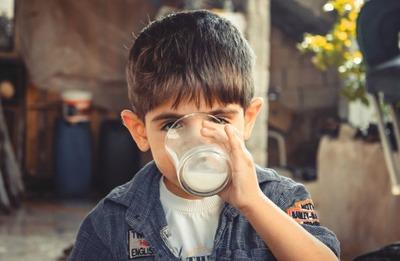 Investigadores analizan presencia de antibióticos y micotoxinas en leche consumida en el país