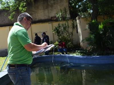 Municipalidad de Asunción decide limpiar predios y multar a propietarios