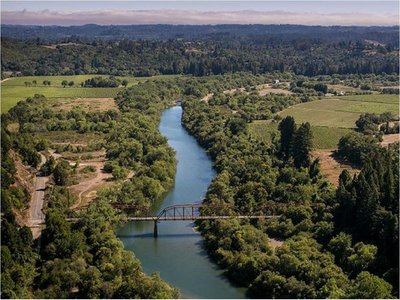 Miles de litros de vino tinto se derramaron en un río de EEUU