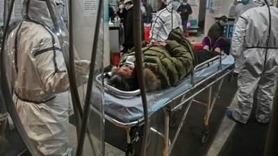 Brasil: 'arenavirus' reaparece luego de 20 años y ya dejó un muerto