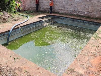 Lambaré: allanan predios con potenciales criaderos de mosquitos