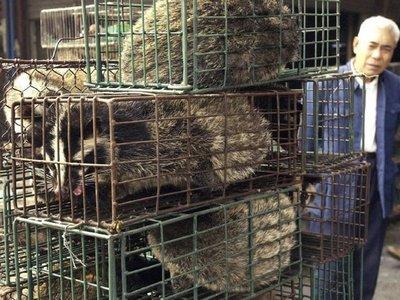 Difunden terribles imágenes del mercado de Wuhan donde se originó el coronavirus