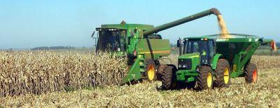 La exportación de maíz aumentó  122%