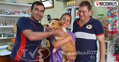 Rubito, el perro arrastrado por su dueño, ya fue adoptado