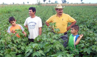 Protección Social del Gobierno pretende alcanzar al Chaco