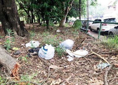 Piden limpiar Parque Carlos A. López luego de  denuncias