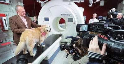 Un hombre pagó USD 6 millones para que un anuncio de que su perro superó el cáncer se transmita en el Super Bowl