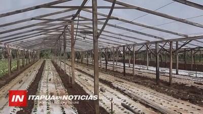 INICIA CONSTRUCCIÓN DE INVERNADEROS DE PROYECTO 70/30 DEL CAH