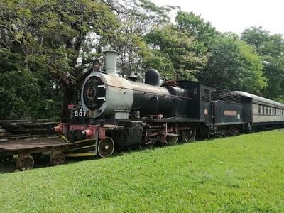 Proponen la instalación de un tren de cargas entre Concepción-PJC