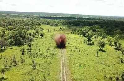 Destruyen pistas clandestinas en parque nacional