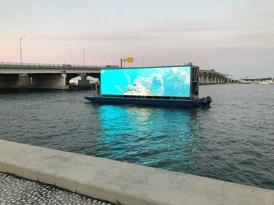 Una webcam destapa los secretos de los corales urbanos de Miami
