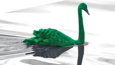 ¿Qué significa cisne verde en economía y cómo lo combatirá el mundo?