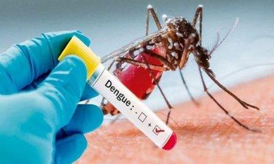 """Lanzaron """"la polca del mosquito"""" para luchar contra el dengue"""