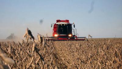 Rendimiento promedio de la soja será de 3.000 kg/h