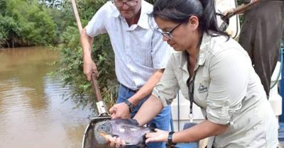 Sembraron 7 mil peces en el  río Ñacunday