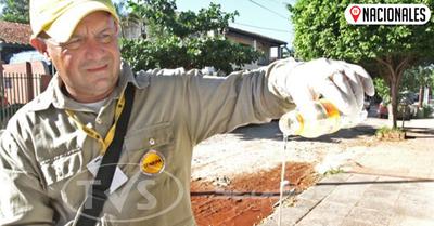 OPS insta a reducir los criaderos de mosquitos y destaca que la prioridad es evitar muertes