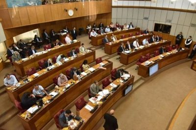 Senadores aprueban emergencia sanitaria por epidemia de dengue