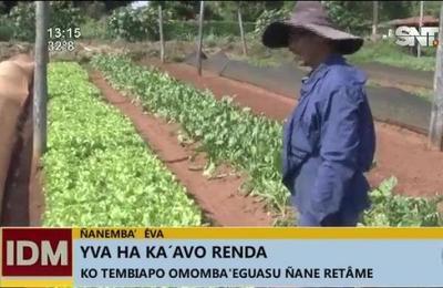 Ñanemba'éva: Yva ha ka'avo renda