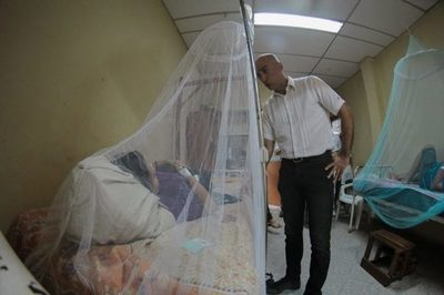 Mazzoleni asegura que Salud no descartaba la declaración de emergencia por dengue