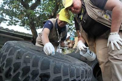 Trazan linea de contención para evitar la expansión del dengue al interior del país