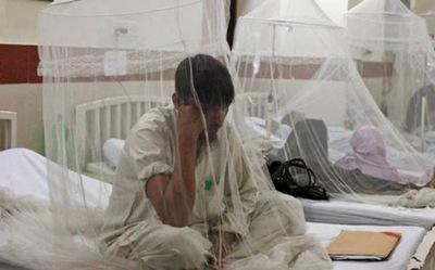 Según informe oficial suman 16 los muertos por dengue y podrían aumentar las confirmaciones