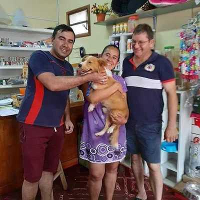 ¡Final feliz para Rubito! El perrito ya fue adoptado