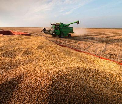 Según UGP,área de soja sembrada aumentó