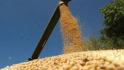Estudio jurídico sospecha que exportadora de soja comete evasión de impuestos y lavado de dinero en Paraguay