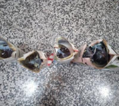 En cárcel de Concepción intentan meter vinos en envases de leche