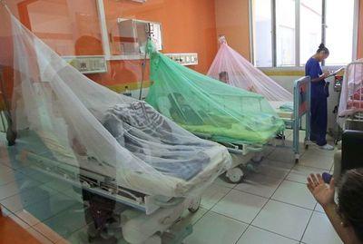 Ante epidemia de dengue, ministro de Salud convoca a sus pares del Mercosur