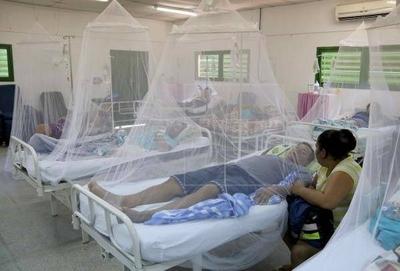 HOY / En más del 70% de los casos, el dengue afecta el hígado sin intervención del paracetamol