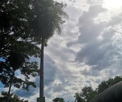 Miércoles caluroso y con lluvias, anuncia Meteorología