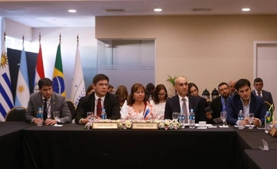 HOY / Mercosur en alerta por dengue: ministros coordinan acciones para afrontar la epidemia