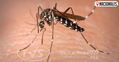 ¿Doble dengue?: podría tratarse de cuadros similares, Salud investiga casos