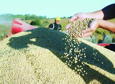 EEUU podría desplazar granos paraguayos