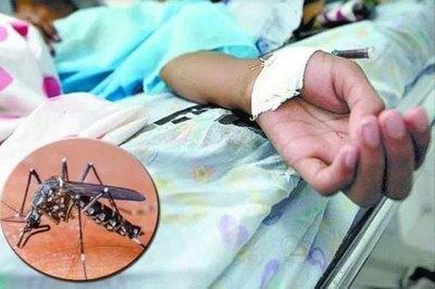 Dengue: Salud Pública recuerda que el reposo por la enfermedad no requiere resultado de laboratorio adjunto